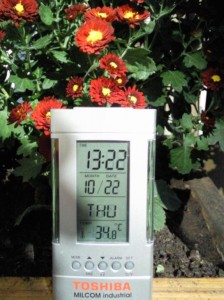Temperatura din balconul meu, azi dimineata