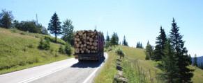 Drumul lemnului dintre Moldova si Maramures