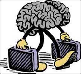 Creierele pleaca fara regrete