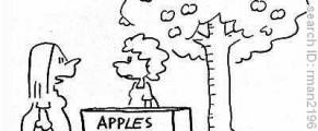 Or fi proaspete merele in copac?