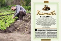Farmville de Ialomita