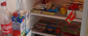 Blo fridge