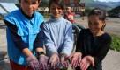 Mâini de români - copiii culegători de afine din Pasul Prislop