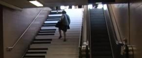 scari-muzicale