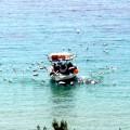 barca-pescarusi