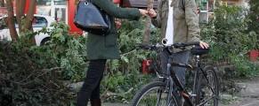 ramona-dan-bicicleta