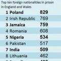 De ce se întorc unii în România