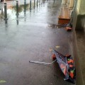 Genocidul umbrelelor
