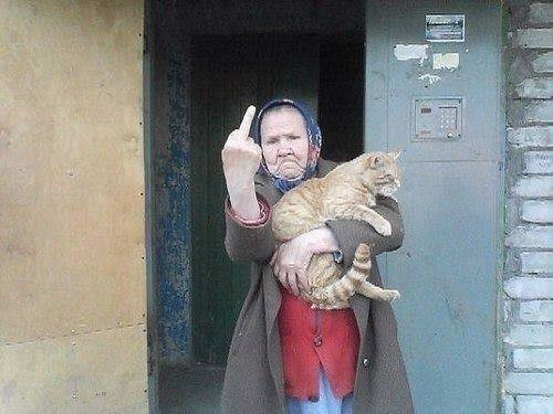 baba-pisica