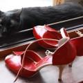 pantofi-tango2