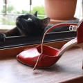 pantofi-tango4