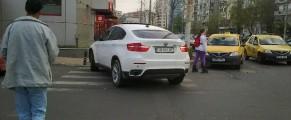 parcat-ca-un-bou