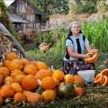 Degustă România, la tine sau la ea acasă